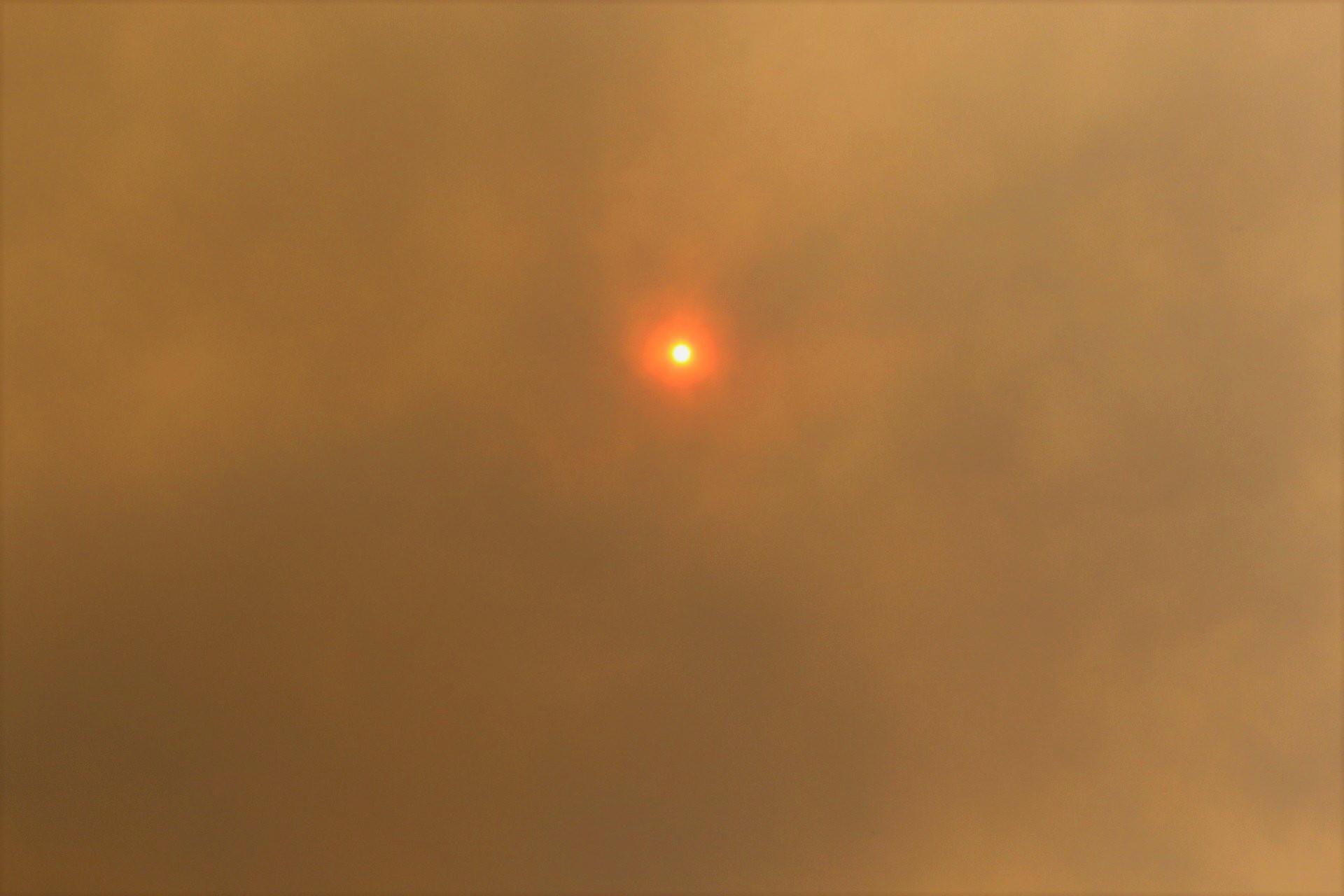 Australian Bushfires